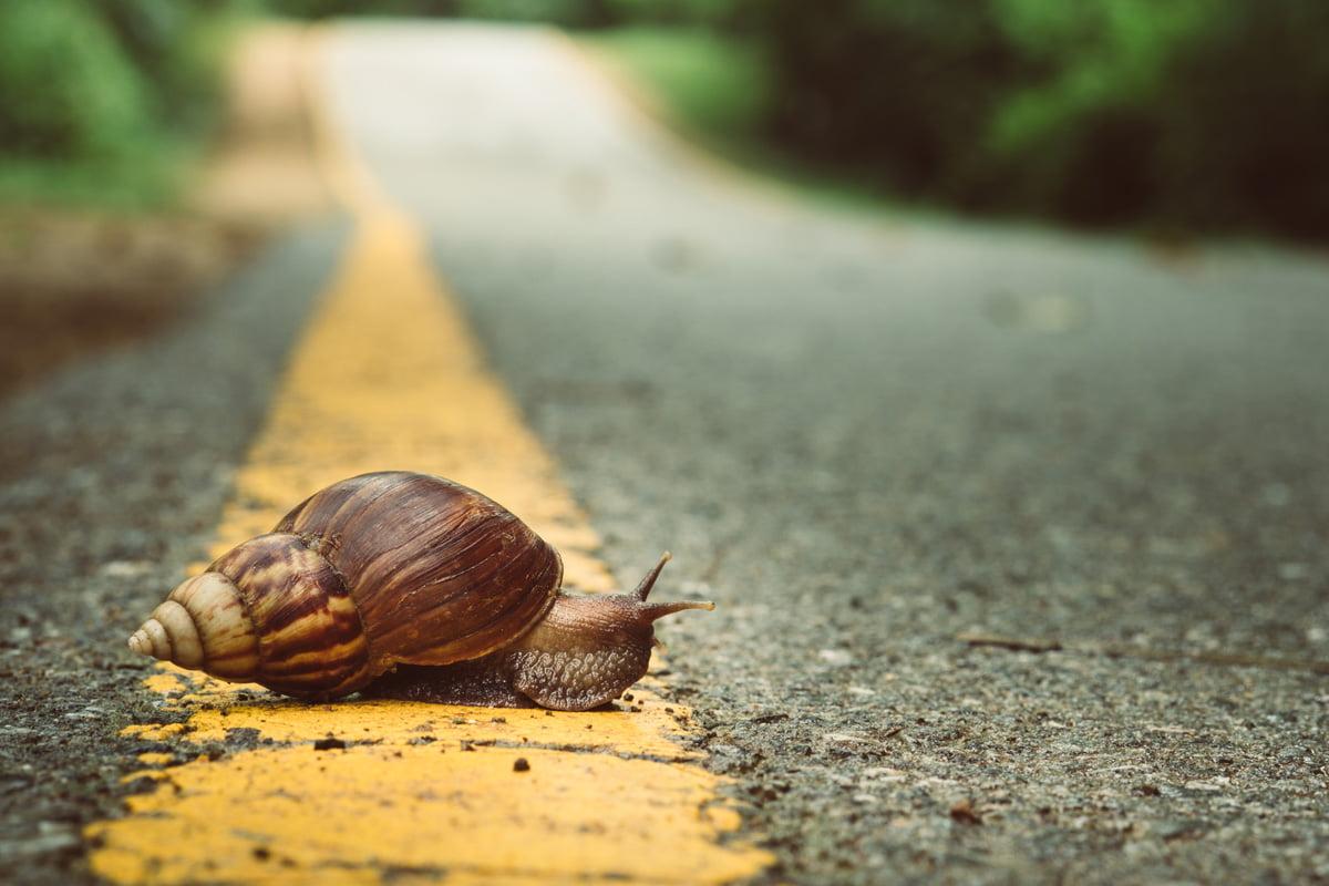 corsa lenta fondo lento