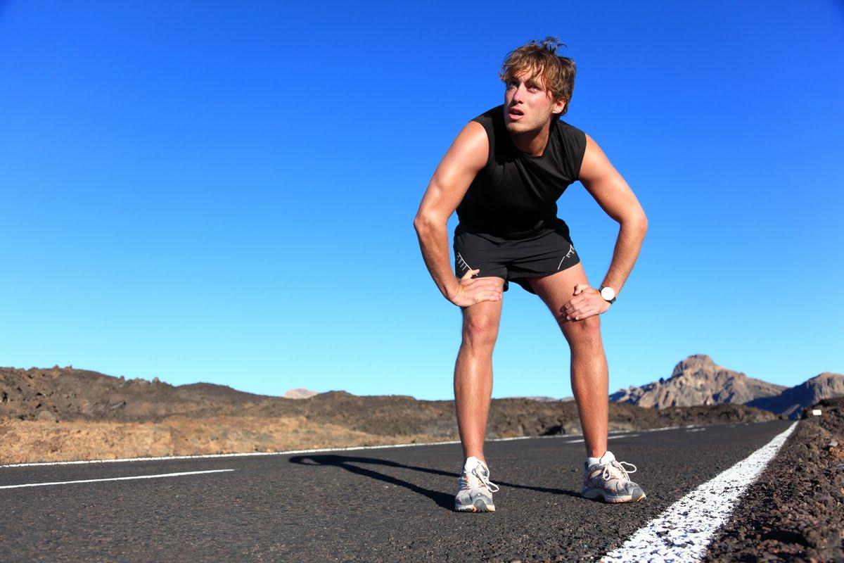 curva metabolica